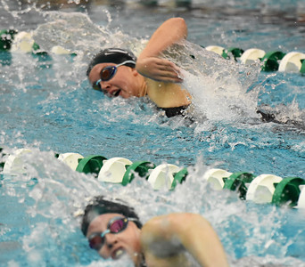 STAN HUDY - SHUDY@DIGITALFIRSTMEDIA.COM Shenendehowa swimming sisters junior Vicky Silaika (top) and Bella Silaika (bottom) raced against each other in Saturday's Section II Division I swimming championships at the Shenendehowa Aquatics Center, Nov. 5, 2016.