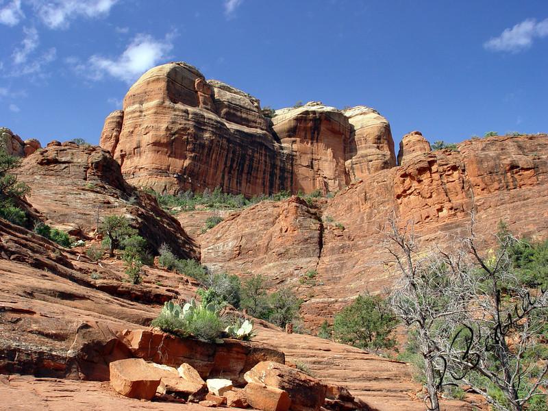Photo By Robert Bodnar...................................Area of Bell Rock
