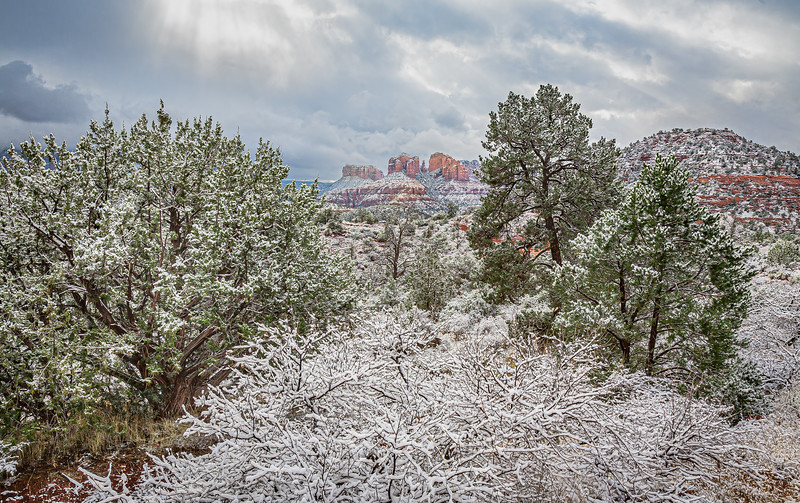 Images of Sedona and Red Rocks Country
