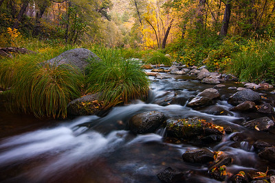 Autumn colors along Oak Creek