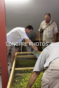Spreading hops onto drying screens.