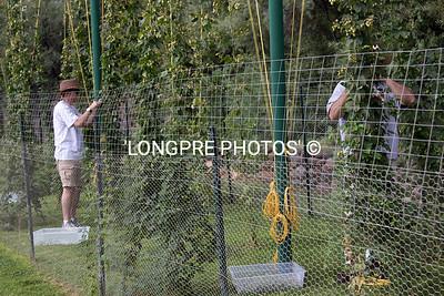 Hop picking Aug. 2012
