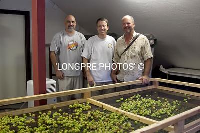 Hop Harvest 2012 Team. Drying in attic of barn.