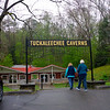 """The most famous features are the renowned Big Room and Silver Falls. The Big Room is a massive cave room over 400 feet long, 300 feet across, and 150 feet deep. It's quite spectacular, and has stalagmites up to 24 feet in height.  <a href=""""https://tuckaleecheecaverns.com/seismictkl-tuckaleechee-caverns-hosts-the-most-sensitive-seismic-station-on-earth/"""">https://tuckaleecheecaverns.com/seismictkl-tuckaleechee-caverns-hosts-the-most-sensitive-seismic-station-on-earth/</a>"""