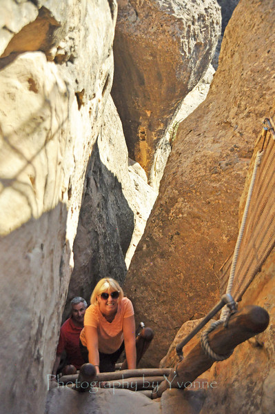 Climbing the ladder out of Cliff Palace.