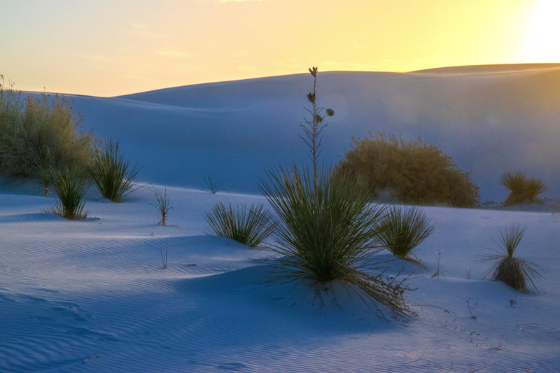 White Sands National Monument, sunset 2