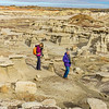 Bisti Badlands of New Mexico (19)