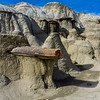 Bisti Badlands of New Mexico (5)
