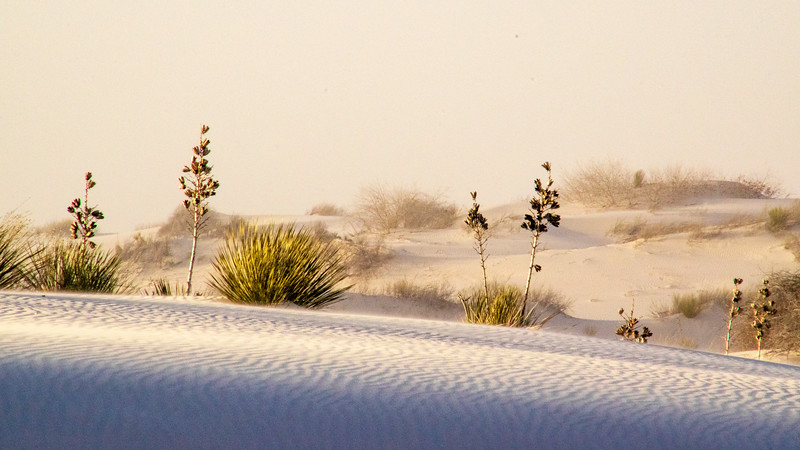 White Sands National Monument, blowing sand