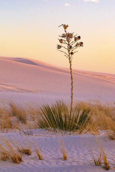 White Sands National Monument, sunset 1