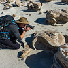 Bisti Badlands of New Mexico (13)