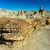 Bisti Badlands of New Mexico (8)