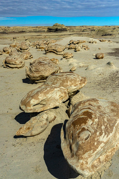 Bisti Badlands of New Mexico (2)