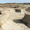 Bisti Badlands of New Mexico (16)