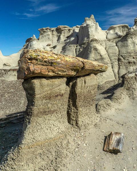 Bisti Badlands of New Mexico (11)
