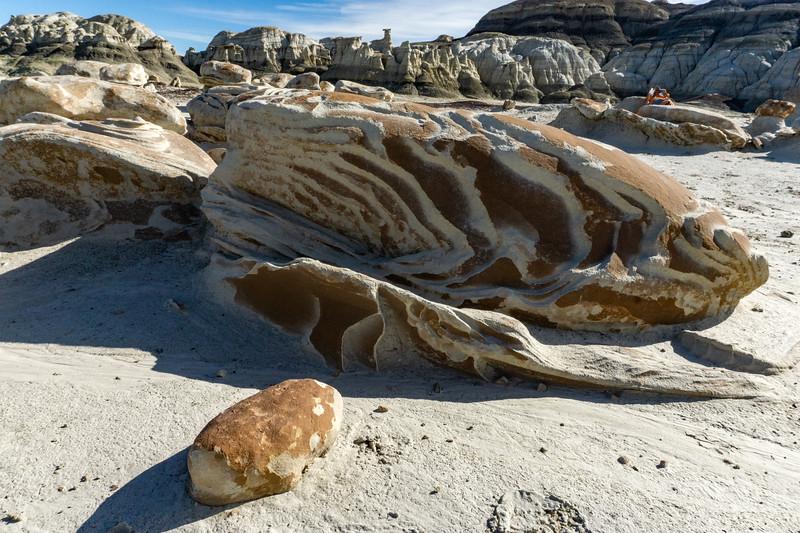 Bisti Badlands of New Mexico (14)