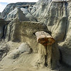 Bisti Badlands of New Mexico (7)