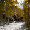 Old Lime Creek Road. October 2011