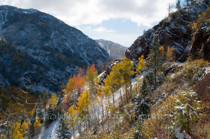 Old Lime Creek Road. October 2011