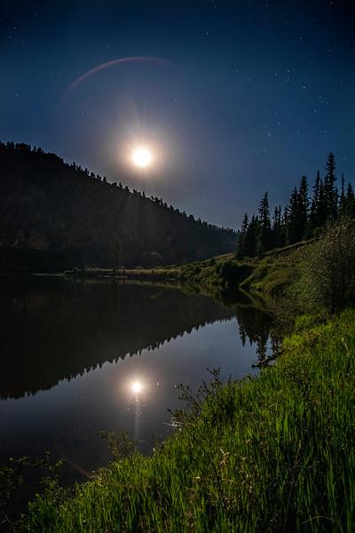 Moon Shimmer