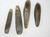 Balsamorhiza sagittata (BASA3)