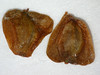 Alnus incana ssp. tenuifolia (ALINT)