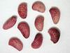 Rubus leucodermis (RULE)