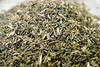 Hyssopleaf thoroughwort - Eupatorium hyssopifolium (EUHY)