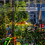 Plants, Architecture, Street Traffic, Urban Glass
