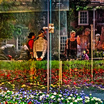 Flowers, Visitors, Liberty Bell Center