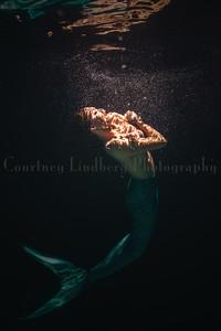 (C)CourtneyLindbergPhotography_080915_0117a