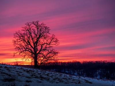 3.11.2019 Country sunrise