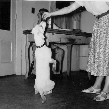 Jessica and John Foster (the dog)- 1958