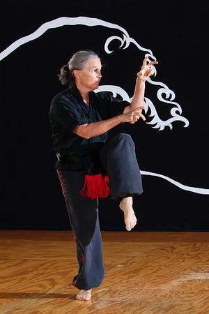 Seido Karate
