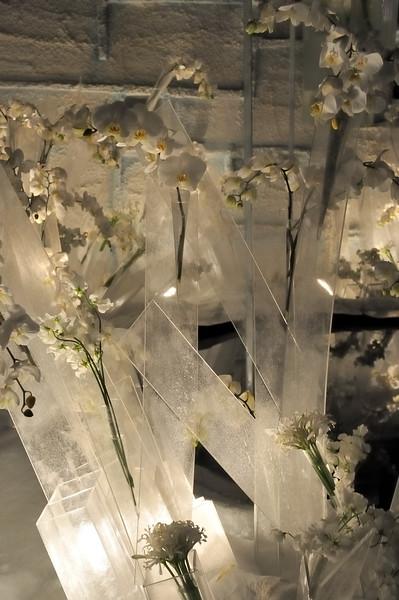 Antarctic tableau - 2010 Philadelphia Flower Show