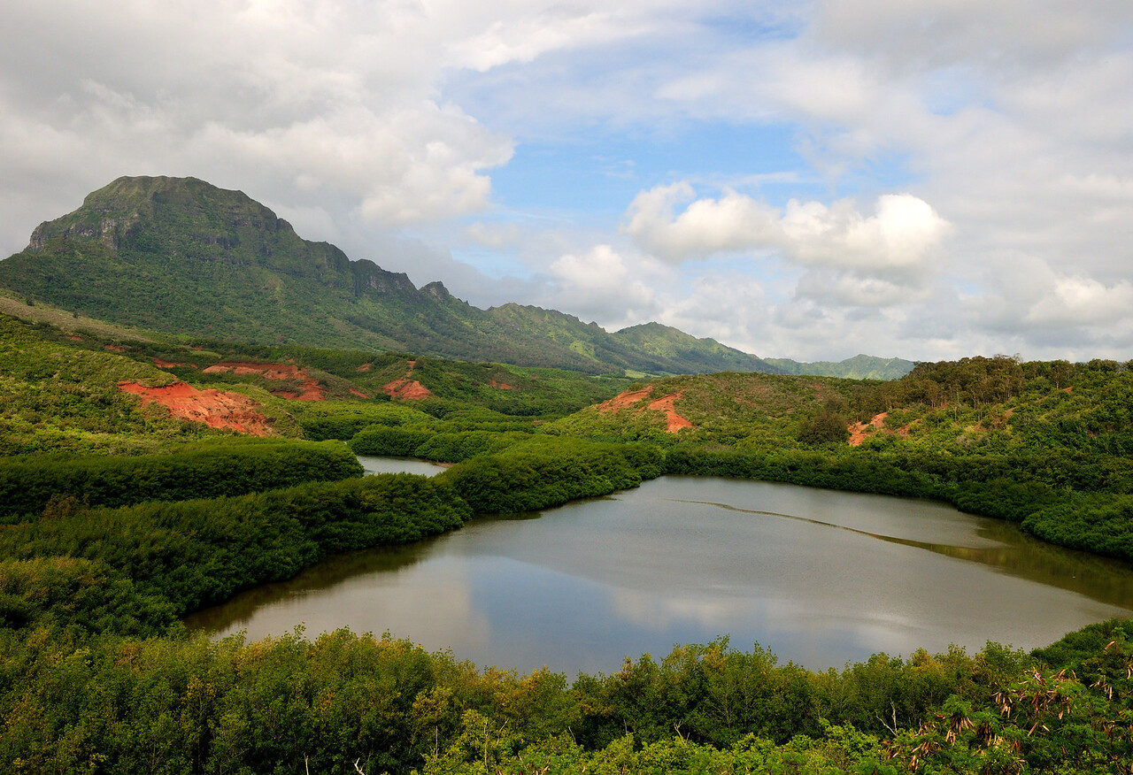 Menehune Pond - Kauai, Hawaii