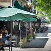 Elmwood Village street scene near SUNY Buffalo State College.