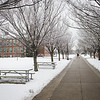 Winter campus scenic at SUNY Buffalo State College.