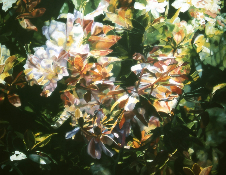 """SUNLIT RHODODENDRONS"" ~ 36"" x 46"""
