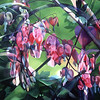 """BLEEDING HEARTS"" ~ 36"" x 48"""