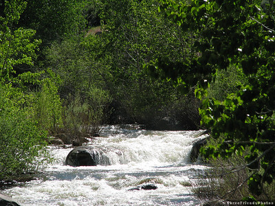0612_6540_West_Fork_Carson_River
