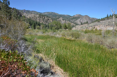 Truckee River Canyon West of Reno.