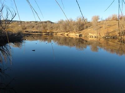 The Pond at Rancho San Rafael - January 31