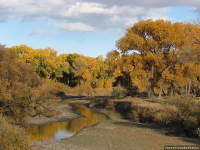 Carson River, East of Carson City, Nevada.