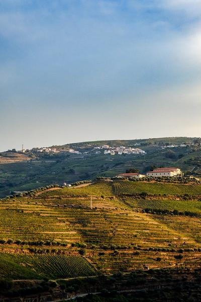 Douro vineyards, from Quinta de la Rosa terrace walls. Pinhao.