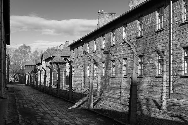 Auschwitz Birkenau_21