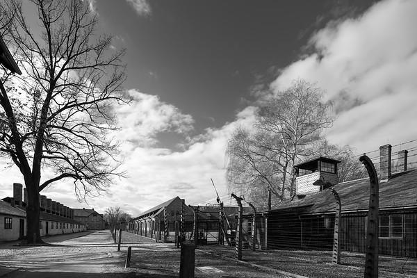 Auschwitz Birkenau_27