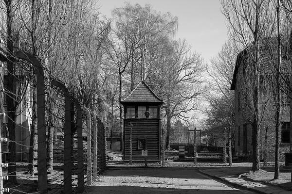 Auschwitz Birkenau_11