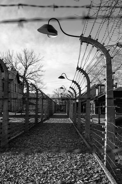 Auschwitz Birkenau_4