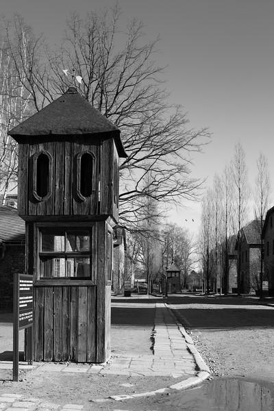 Auschwitz Birkenau_17